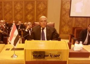 شكري  تحديات خطيرة تواجه المنطقة العربية