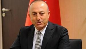 الخارجية التركية تعلن تأجيل تدريب المعارضة السورية في تركيا