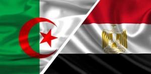 الجزائر ومصر يؤكدان أن الحل السياسي هوالسبيل الوحيد لإنهاء الأزمة الحالية في ليبيا