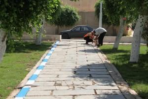 لجنة تجميل المدينة ببلدية صبراتة تباشر صيانة حدائق البلدية 2