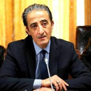 الاتفاق السياسي سيوحد الجهود لحفظ السيادة الليبية