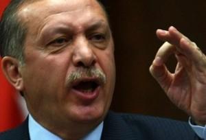 أردوغان استخدم الانقلاب لتنفيذ أجندته المتطرفة